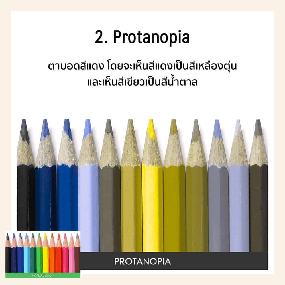ตาบอดสีสีแดง สีเขียว Protanopia คือ