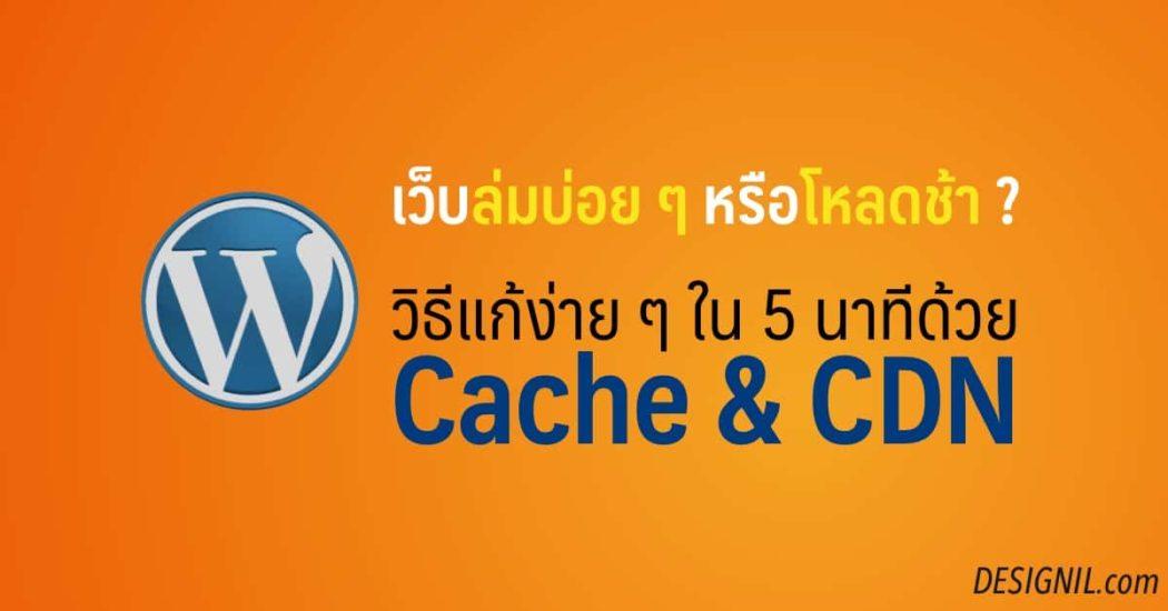 designil wordpress cdn cache