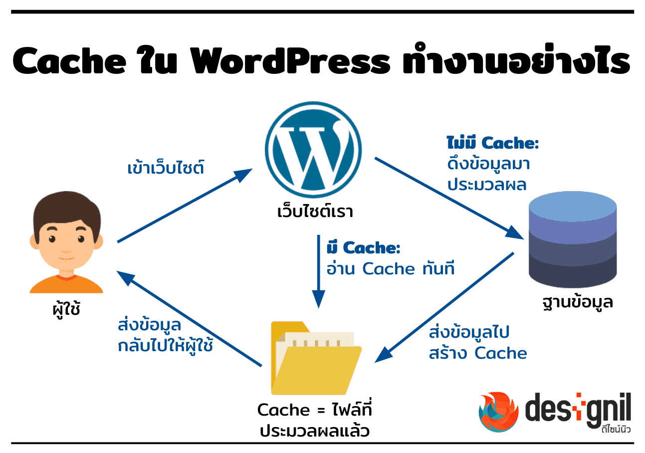 Cache WordPress วิธีการทำงาน