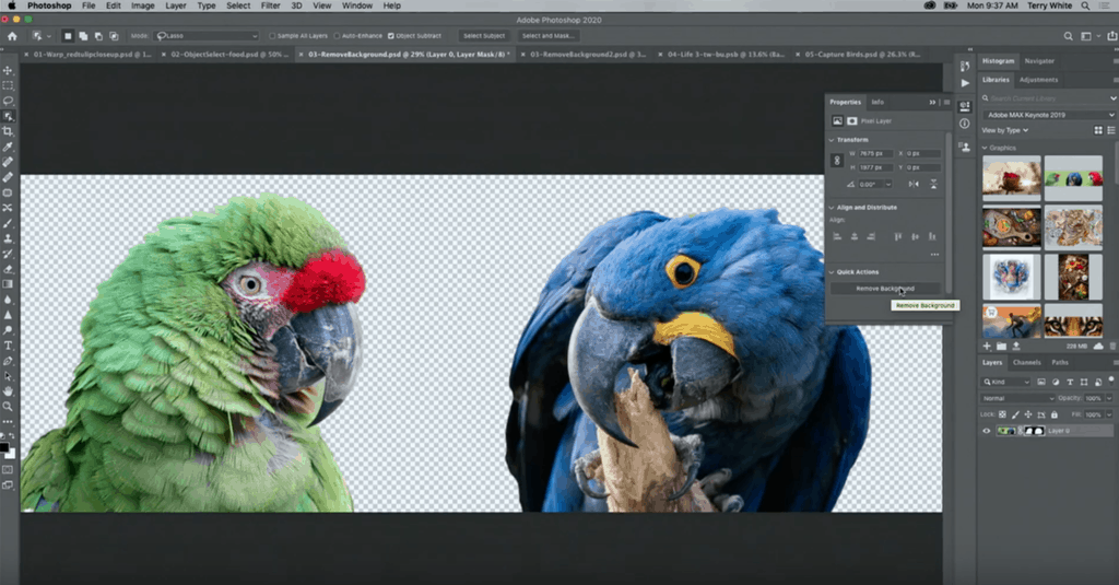 ปุ่มวิเศษ ทูลใหม่ใน Photoshop ลบ background ได้ในปุ่มเดียว