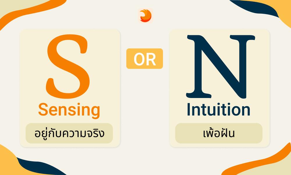 Sensing or Intuition MBTI IT JOB