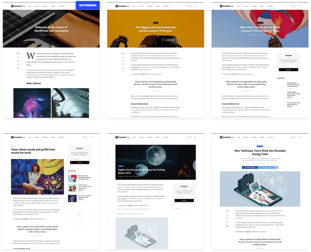 07 content berg - WordPress Gutenberg Themes