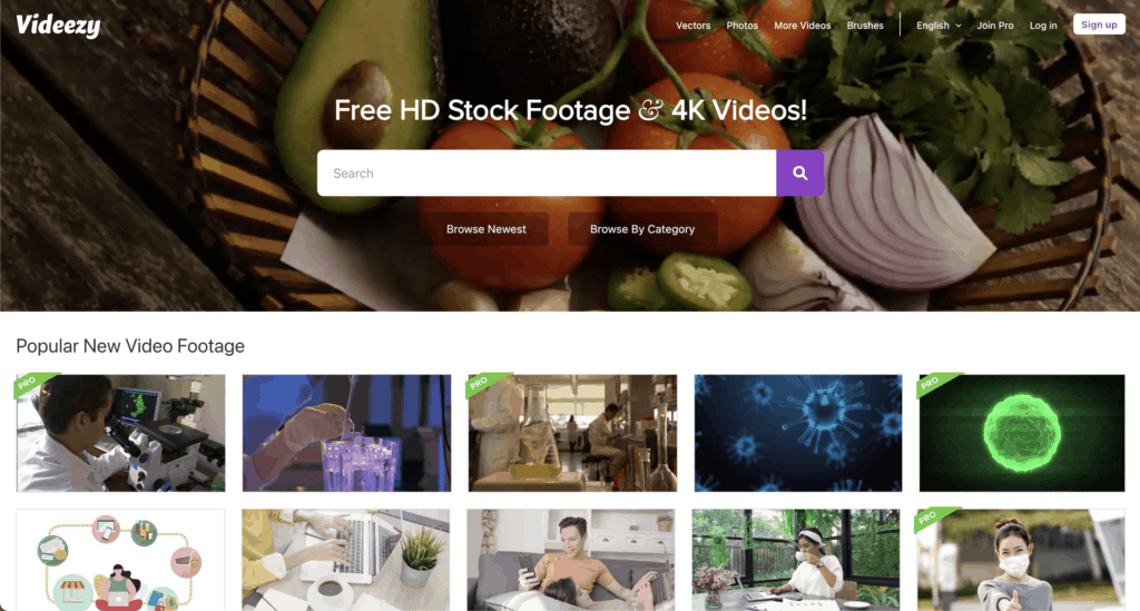 videezy free hd videos