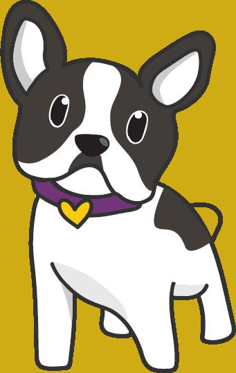 002 รูปหมา เฟรนช์บูลด็อก